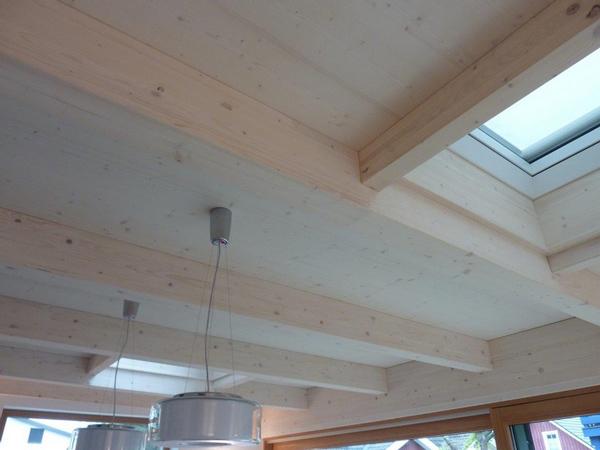 Hausanbau Reihenendhaus sichtbare Dachkonstruktion
